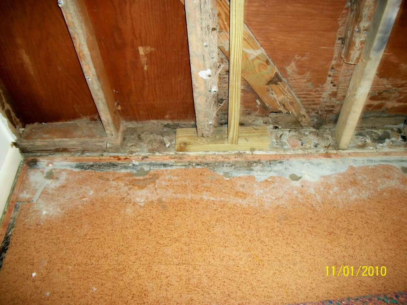 Termite treated and repaired wall studs, jack studs and headers